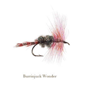 Burrinjuck Wonder