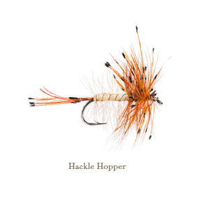 Hackle Hopper, original watercolour painted by L.C. Smith