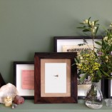 Royal Wulff framed and arranged in situ
