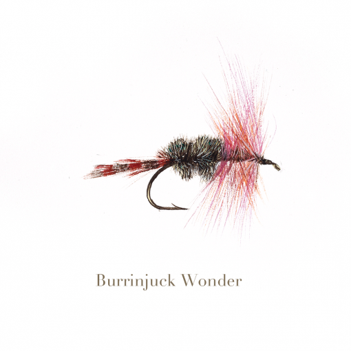Burrinjuck Wonder, trout fly, watercolour painted by L.C. Smith
