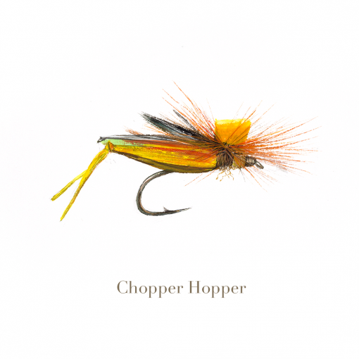 Chopper Hopper, trout fly, watercolour painted by L.C. Smith