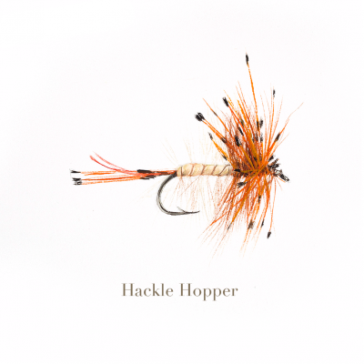 Hackle Hopper, trout fly, watercolour painted by L.C. Smith