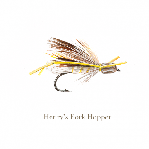 Henry's Fork Hopper, trout fly, watercolour painted by L.C. Smith