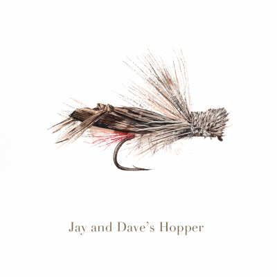 Jay and Dave's Hopper, trout fly, watercolour painted by L.C. Smith
